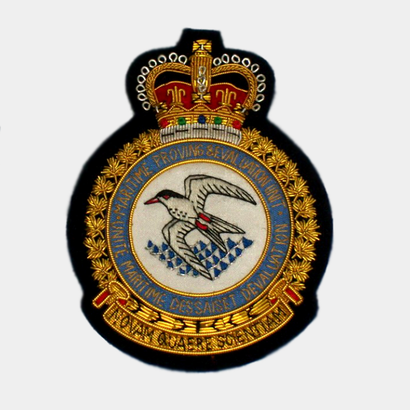 Squadron embroidered blazer patches bullion crest